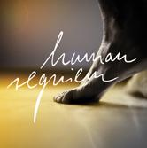 """""""human requiem"""" als krönender Abschluss der zweiten Auflage von Chor@Berlin"""
